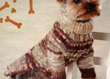 Свитер для собаки вязанный спицами – 18 вариантов со схемами, описанием и видео МК