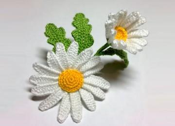 Как связать цветок ромашки крючком: 6 вариантов исполнения со схемами, описанием и видео МК