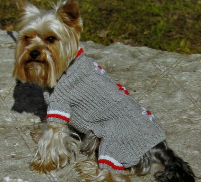 одежда для собак 2