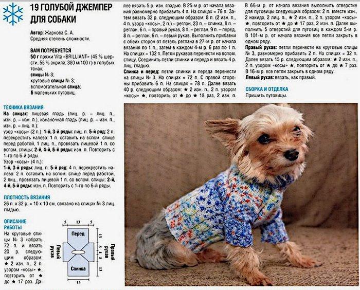 свитер для собаки спицами схемы и описание 18 вариантов